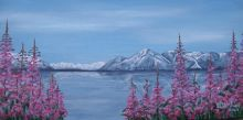 Atlin in July